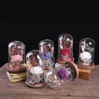 热销玫瑰花玻璃罩永生花小夜灯装饰品房间led发光生日礼物摆件
