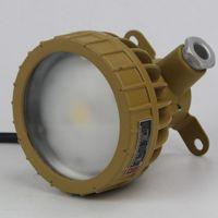 亮聚福BSD96防爆视孔灯 工地矿场机房照明灯 LED防眩泛光灯30W
