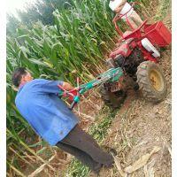 小型手推玉米收割机 小型手扶式玉米秸秆还田机