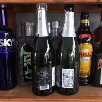 西班牙进口银色活力 半干起泡葡萄酒 商超 餐饮 夜场 酒吧 会所