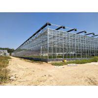 湖南农业生态旅游采摘大棚温室6米墙高、自动黑丝外遮阳型承建企业