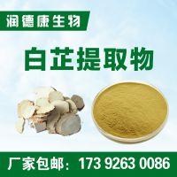 白芷提取物10:1 白芷粉 全水溶 厂家包邮 白芷提取物