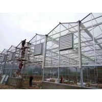 甘肃大棚建设、玻璃智能温室建设,甘肃大棚管、玻璃智能温室工程搭建骨架厂家