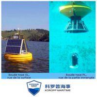 青岛厂家专业定制工业水质检测航标 总氮检测浮标
