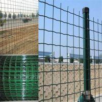 厂家荷兰网铁丝养殖养鸡鸭圈林地果园金属网定做防护围栏网质量好