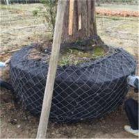 树根网,包树网,包土球网用户反馈