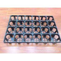 直销小黑方24孔穴盘兰花盘方型育苗盘多肉植物7厘米