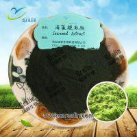 海藻提取物 50% 海藻多糖 海藻蛋白  西安瑞林 现货供应 包邮