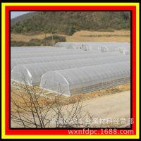 供应 温室大棚 热镀锌钢管大棚(825型) 蔬菜大棚