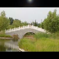 石雕汉白玉栏板护栏 拱桥河道石栏杆