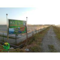 湖北天泽惠丰生态农业发展有限公司:青蛙养殖应提前做好准备
