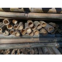 供应北京竹竿、北京杉木杆、绿化材料-腾福竹木