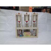 供应上海CKG-7.2/160立式高压真空接触器