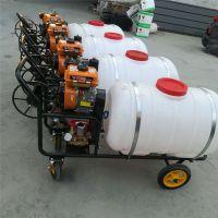 普航手推式大棚多效打药机 手推式杀虫喷雾器价格 果园专用风雾打药机