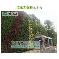 立体绿化苏州植物墙如何制作养护