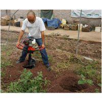 北海果园种苗挖坑机 电线杆挖坑机速度快