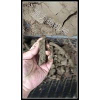 制砂粘性污泥脱水机 污泥压滤脱水机 带式压滤机厂家