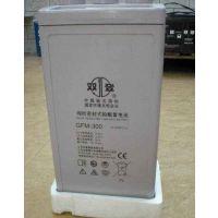 双登蓄电池GFM-300铅酸电池2V300AH电厂专用报价
