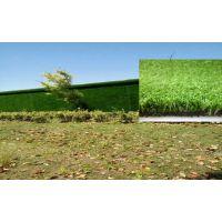 云南昆明煌仑经供应销售多种规格人造草坪