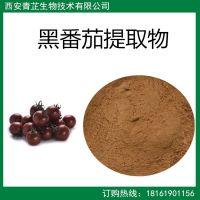 黑番茄提取物 黑番茄粉 速溶 浓缩 喷雾干燥 浸膏 粉 厂家