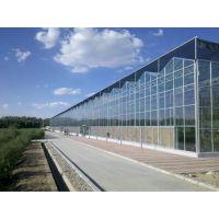 玻璃温室/甘肃酒泉建设全智能玻璃温室厂家地址