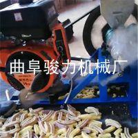 河南 黄豆 红豆膨化机设备 骏力直销 五谷杂粮小米花膨化机 箱式弯管机型号