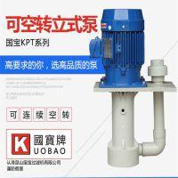 国宝立式耐酸碱排污泵 膜清洗加药泵 放心选购