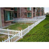 安平pvc护栏别墅塑钢花园护栏哪家好