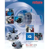IQM10/F10/A进口罗托克电动执行机构