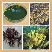 墨角藻提取物 20:1 优质墨角藻萃取 专业植提 现货供应 瑞林