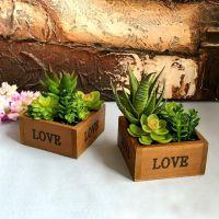 热销多肉装饰客厅办公室桌面餐桌装饰品小摆件仿真绿植物花卉盆栽