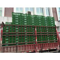 天全食品箱手提篮塑料周转箱生产厂家 PP塑料周转箱