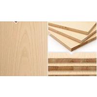 洛氏路品牌板材 儿童房装修专用生态板 环保生态板