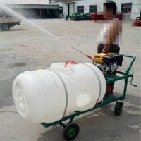 防疫消毒喷雾器 果园汽油喷药器手推式打药机厂家直销