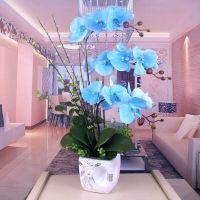 PU手感家居饰品花蝴蝶兰套装客厅假花仿真装饰花餐桌摆放花艺过胶