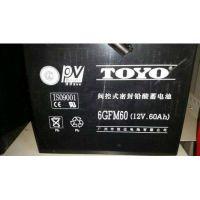 广西东洋蓄电池6GFM60(12V60AH)后备电源
