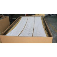 全国一级代理三菱MBRFiltlink中空纤维膜片15m2/60E0015SA
