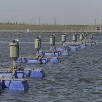 河北高浓盐水脱盐回收蒸发器 全自动高效水处理设备