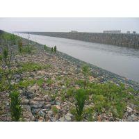水利生态格宾网,格宾网河道引流,格宾网防洪墙