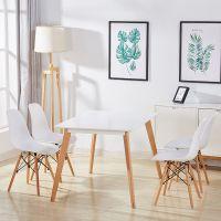 现代简约伊姆斯椅子家用凳子靠背懒人休闲洽谈白色餐椅北欧书桌椅