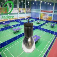 室内羽毛球场照明灯 防眩光羽毛球馆专用灯 天地同辉篮球羽毛球训练场地照明LED灯光标准