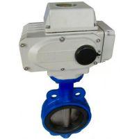 苏州市医院污水管道排放安装对夹式蝶阀D971X-10C  DN250电力控制