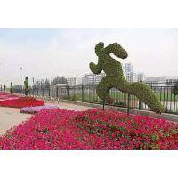 贵州大型真植物动物造型 几何 数字 字母 星空主题雕塑 佛甲草造型