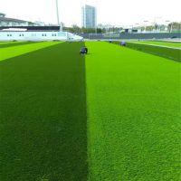 丰草品牌学校足球场俱乐部专用铺设人造草坪绿色地毯人工塑料假草皮