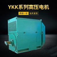 供应西玛电机 Y3551-2 220KW 6KV IP23 高压电机 泰富西玛 (原西安电机厂)