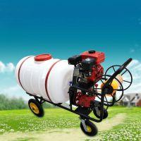 驰航自走式小方向盘喷药机 玉米三轮汽油打药机 农作物秸秆打药机