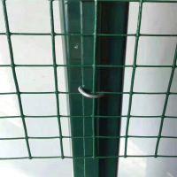 优质浸塑荷兰网 绿色圈地护栏网 养殖用防护网