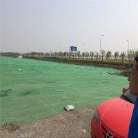 土地面盖土绿网 环保检查用绿网 大棚遮阳网