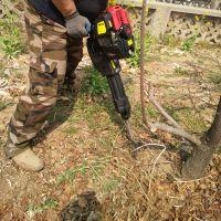 带土球铲头式断根移栽机 苗圃手提式移栽挖树机图片 金佳硬土质树苗移栽机