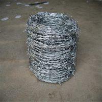 高速刺线 刺线生产厂家 多刺芒刺线